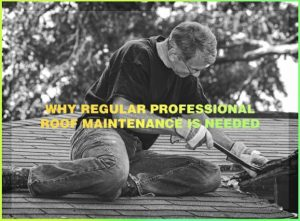 Why Regular Professional Roof Maintenance Is Needed