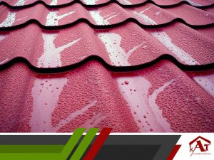 Water Damage: Signs on the Roof and From the Ground