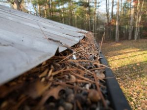 The Most Common Causes of Roof Leaks